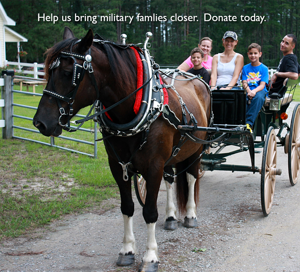 Old Glory Legacy Foundation Horse N Buggy